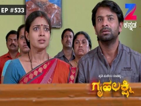 Gruhalakshmi - Episode 533 - February 22, 2017 - Full Episode