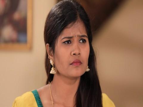 Pattedari Prathiba - Episode 244 - March 16, 2018 - Full Episode