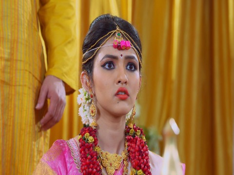 Subbalakshmi Samsara Ep 156 22nd January 2018
