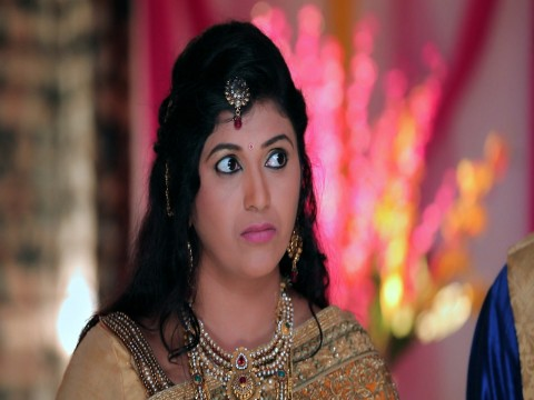 Vidya Vinayaka - Episode 20 - November 24, 2017 - Full Episode