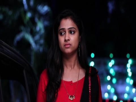 Vidya Vinayaka Ep 58 17th January 2018