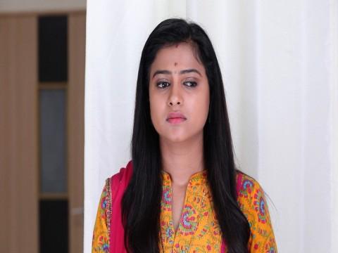 Vidya Vinayaka Ep 119 12th April 2018