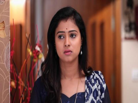 Vidya Vinayaka Ep 125 20th April 2018