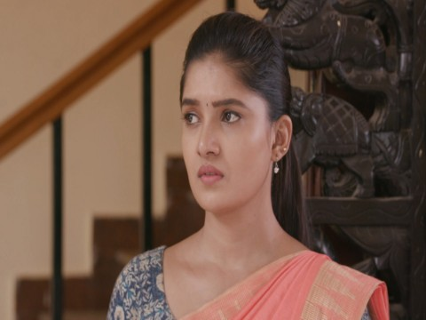 Lakshmi Vanthachu - Episode 716 - November 20, 2017 - Full Episode