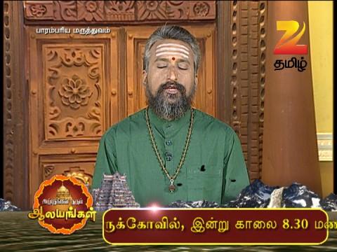 Watch Parambariya Maruthuvam EP 986 19 Mar 2016 Online