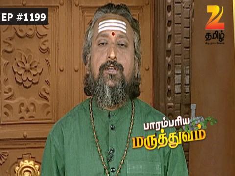 Paarambariya Maruthuvam - Episode 1199 - October 18, 2016 - Full Episode