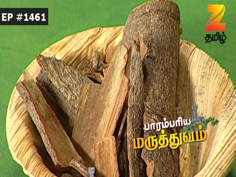 Paarambariya Maruthuvam - Episode 1461 - August 17, 2017 - Full Episode