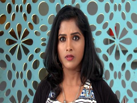 Kalyana Vaibhogam - Episode 150 - November 24, 2017 - Full Episode