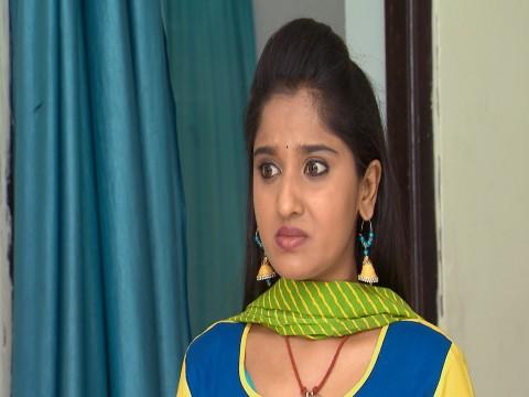 Kalyana Vaibhogam Ep 232 20th March 2018