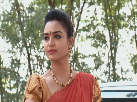 Mutyala Muggu Ep 490 19th January 2018