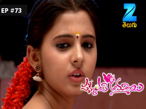 Pakkinti Ammayi Ep 73 16th February 2017