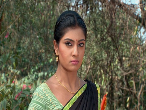 Punnaga - Episode 258 - January 6, 2018 - Full Episode