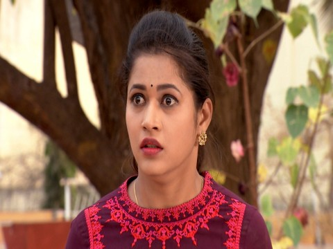 Punnaga Ep 317 16th March 2018