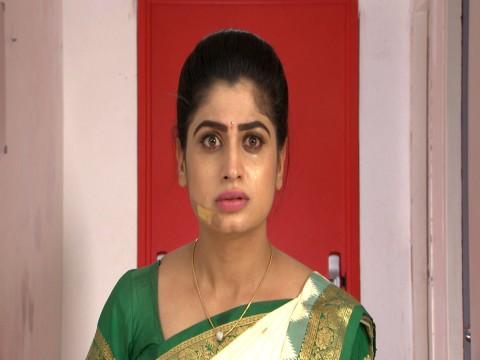 That Is Mahalakshmi Ep 219 28th May 2018