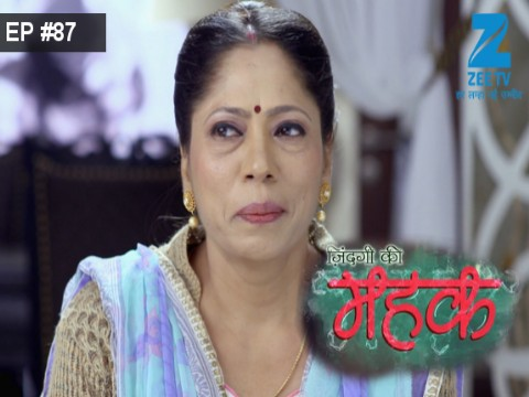 Zindagi Ki Mehek  Ep 87 17th January 2017