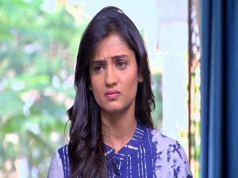 Phulpakhru Ep 213 16th January 2018