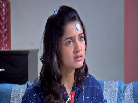 Phulpakhru Ep 461 29th October 2018
