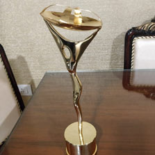 ZEE's Sales team bags award at Indian Television's The Indian Telly Technical, Trade, Programming awards
