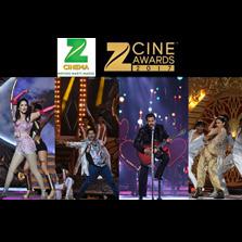 A double shaandaar Saturday with Zee Cine Awards 2017
