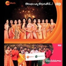 Zee Telugu and Zee Cinemalu adorn a refreshed brand image; announce the launch of HD channels
