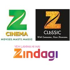 It's a Golden Run for Zee Cinema, Zee Classic and Zindagi at APAC Customer Engagement Forum and Awards 2017