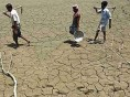 महाराष्ट्र के बाद कर्नाटक में सबसे ज्यादा किसानों ने की खुदकुशी: NCRB