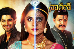 Naagini Ep 357 27th June 2017