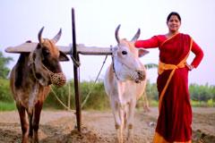 Didi No.1 Season - 7   Farmer - Eti Mondal   Today, at 5 PM   Promo