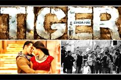 Salman-Katrina's 'Tiger Zinda Hai' To Be Shot In Morocco