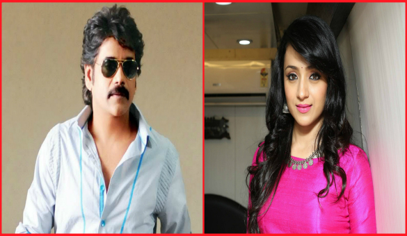 Trisha in Nagarjuna's next..?