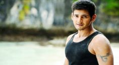 Curiosity on Mahesh Plans