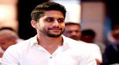 'Allari Alludu' title for Naga chaitanya next….