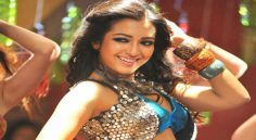 CatherineTresa special song in Boyapati's film..