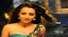 Celebs Wishes To Trisha Krishnan