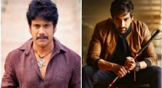Nag, Raviteja will not compete