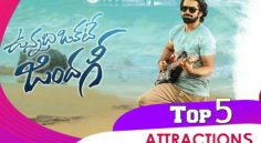 'VunnadiOkateZindagi' Top5 Attractions