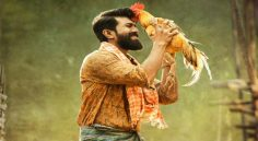 Rangasthalam 5 Weeks Collections