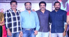 Ammammagarillu Movie Success meet