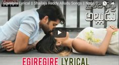 Egiregire Lyrical Video From Naga Chaitanya 'Shailaja Reddy Alludu'