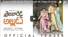 Akkineni Nagachaitanya 'Sailaja Reddy Alludu' Teaser Review