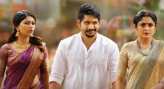 ShailajaReddy Alludu Trailer Release Postpone