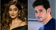 Ileana In Mahesh Babu Next Film