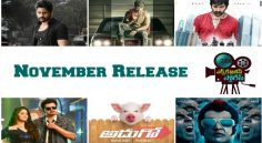 November Releases In Tollywood