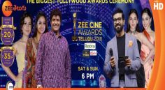 Zee Telugu Cine Awards Telecasts This weekend