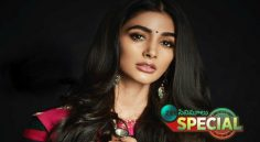 Pooja Hegde Only Prefers Star Hero Movies