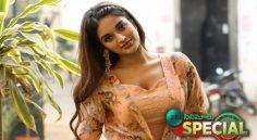 Nidhi Agarwal Gets Closer To Mass Audience With 'ismart shankar'