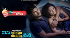 'Ninu Veedani Needanu Nene' Moview Review