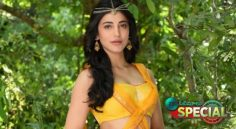 After Ileana Now Shruthi Hassan Is Trying Her Luck With Raviteja