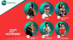 Zee Cinemalu ( 24th November )