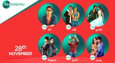 Zee Cinemalu ( 28th November )